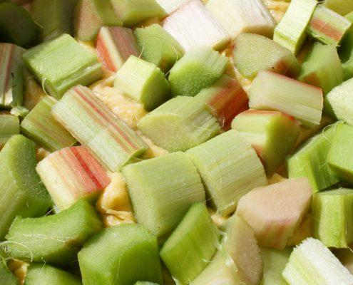 Rharbarber Gemüse